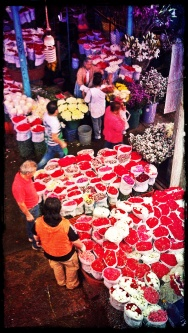 Coloful markets like the Flower's market. Available in our Glimpse of Mexico City http://bit.ly/1bvxKMV and Ciudad de Mercados tour http://bit.ly/17RRgmY